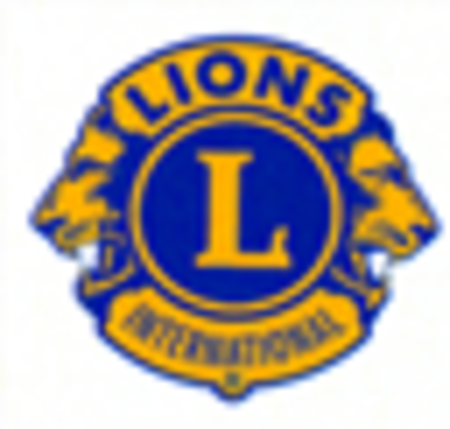 LionsLogo.png - small